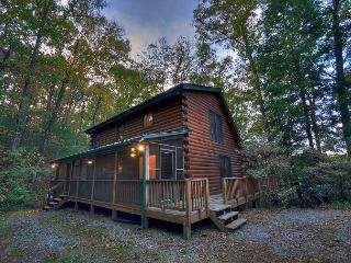 Seclusion, Privacy in the North Ga Mountains on Fightingtown Creek, Blue Ridge