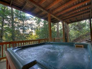 Seclusion, Privacy in the North Ga Mountains on Fightingtown Creek