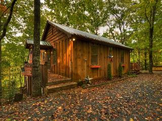'America the Beautiful' in a North Georgia Cabin. 3 bedroom mountain home!!!