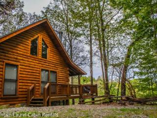 Breezy Mountain View- 2 BEDROOM, 2 BATH, SLEEPS 6, CABIN HAS A BEAUTIFUL MOUNTAIN VIEW AND COMMUNITY LAKE ACCESS, HOT TUB, WIFI, PET FRIENDLY, WOOD BURNING FIREPLACE, ONLY $125/NIGHT!!, Blue Ridge