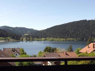 appartement en chalet vue sur le lac Gérardmer