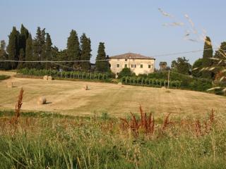 AZIENDA AGRICOLA BIOLOGICA, dependence di Villa 14, Lucca