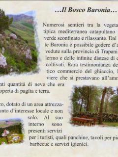 Bosco di Baronia a Vita
