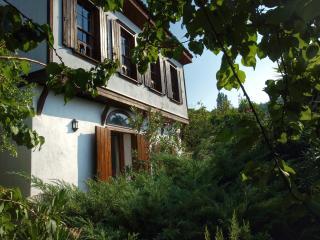 Fig House,Terrace Houses of Sirince