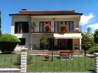 Diana - spacious apartment  in central Istria