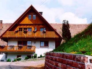 Vacation Apartment in Bad Rippoldsau-Schapbach - 969 sqft, 2 bedrooms, max. 5 people (# 7746)