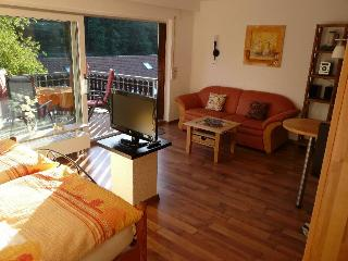 Vacation Apartment in Bad Herrenalb (# 7760) ~ RA64136