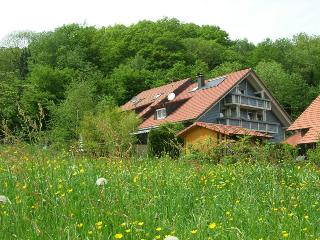Vacation Apartment in Horben - combined living and sleeping area, max. 3 people (# 7778)