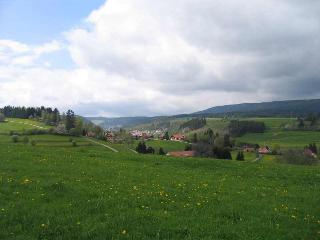 Vacation Apartment in Lenzkirch - 538 sqft, 1 living room / bedroom, max.2 people (# 7789)