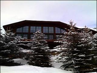 Experience Vail in Elegance, Well-Appointed Mountain Chalet (208202)