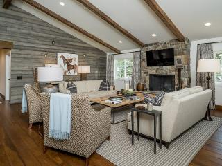 Canyon Run Blvd West 1135 - Newly remodeled Mountain modern home, Ketchum