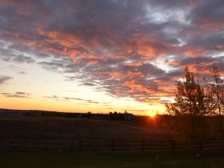 Peaceful Country Acreage 5 min from the City