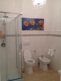 Bathroom, all new