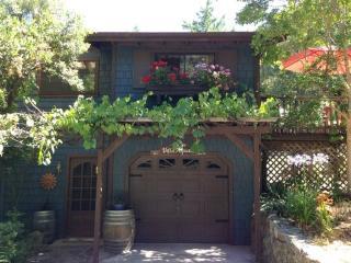 Villa Above the Vines ~ RA49, Santa Rosa