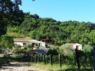 AGRITURISMO FONTENUOVA - LA VIGNA
