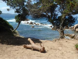 Appt T2  cosi à moins de 250 m de la plage, Porticcio
