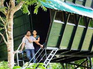 Forest inn Treehouse wayanad, Sultan Battery