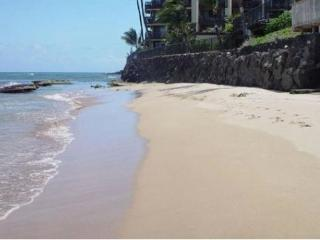 MAUI OCEANFRONT 2-BEDROOM/BATH BEACH HOUSE CONDO
