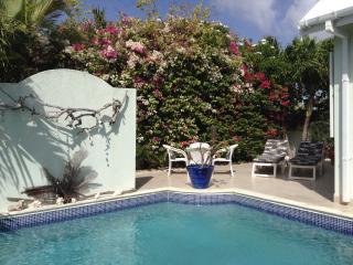 Sunrise Villa,Private Pool,  ,Atlantic Rising, Bottom Bay, St Philip, Free Wi Fi