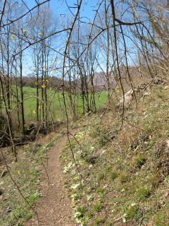 Sentiero per accedere alla località di Neguggio, path accessing the Neguggio site