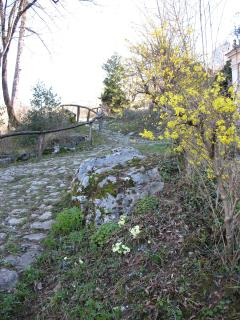 Sentiero per il Sanutario Madonna alla Rovinata
