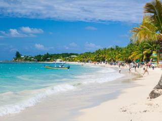 Coral Sands #7, Roatán
