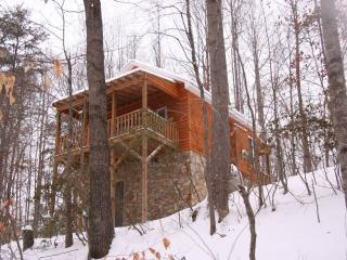 The Cottage:  Private/Wooded Getaway, Elkin
