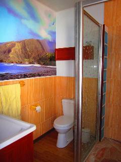 All bathrooms in each bungalow have showers built for two.