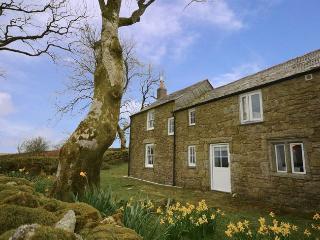 29313 Barn in Bodmin Moor, Washaway