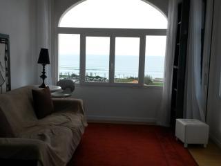 bel appartement vue mer à 200 m de la plage, Biarritz