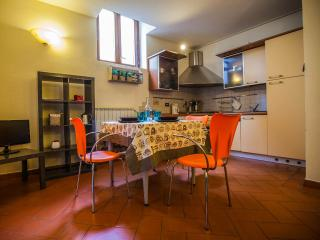 San Frediano Apartment E in Florence, Florencia
