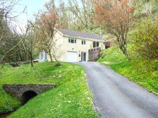 WOODSIDE, woodburner, WiFi, garden, jacuzzi, near Laugharne, Ref 921026