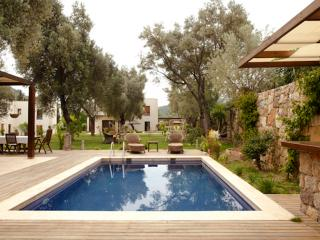 Greenlife A Type Villas, Torba