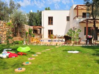 Greenlife B Type Villa, Torba