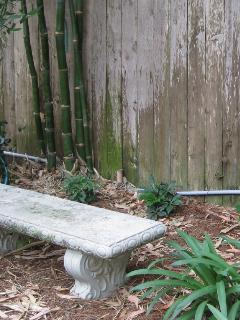 Bench in the back yard