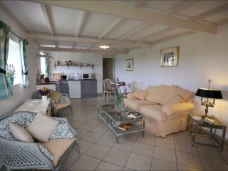 Spacious fully equipped lounge/kitchen,comfy sofa,fine wines to accompany local gastronomy
