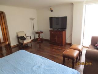 Huge Apartment w/Piano - 15 Minute Walk To Parque Lleras!, Medellin