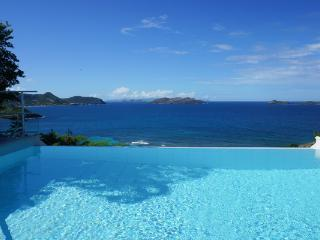 Charming villa completely private but rentable with villa CAR. WV TOR, St. Barthelemy