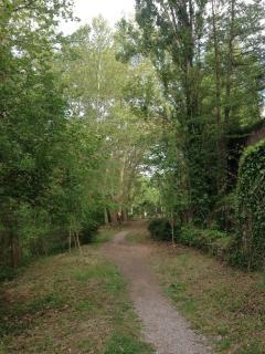 Paseos tranquilos cerca de casa