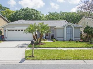 LOCATION! Luxury Home in Upscale Tampa Area