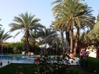 Villa situé à 10 km de marrakech ferme de 15000 m2