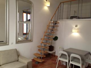 Luxury Apt in the heart of Avignon (Provence)