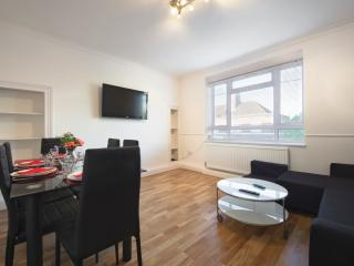 Evans House - Central London 2 bedroom apartment