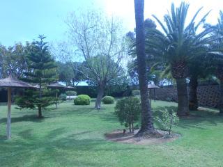 Jardín de la piscina