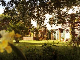 Domaine de La Salutière - La Grande Maison 5CH, Lauraguel