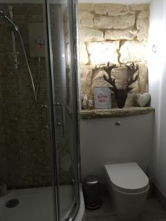shower room with alternative lighting