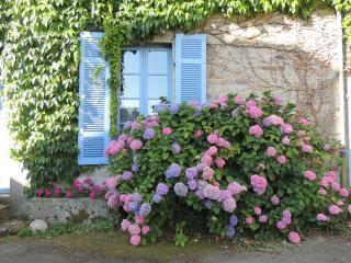 Une Chambre en Bretagne, Collinee