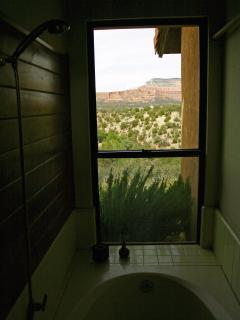 ...and a bath/shower with great views in BOTH directions