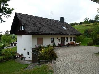 Vacation Apartment in Dachsberg - 753 sqft, 1 bedroom, max. 3 people (# 7809)