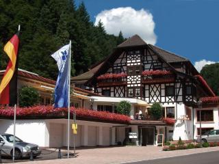 Guest Room in Bad Peterstal-Griesbach -  (# 8736)